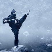 Guerrieri ninja
